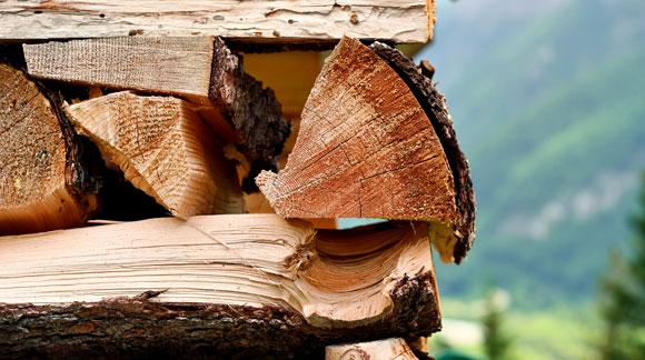 brennholz aus tschechien g nstig kaufen lkw lieferung. Black Bedroom Furniture Sets. Home Design Ideas
